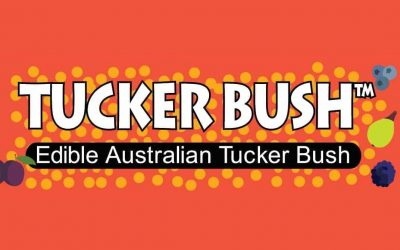 Welcome to Tucker Bush