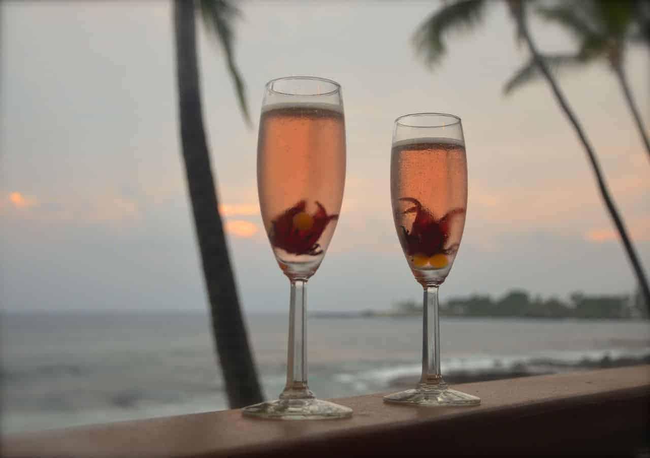 Rosella in Sparkling Wine
