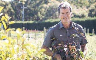 Can Bushfood Gardening Make Us Happier?